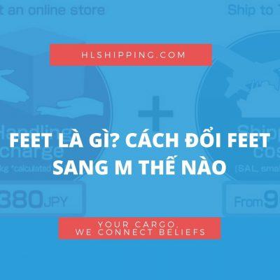 feet là gì